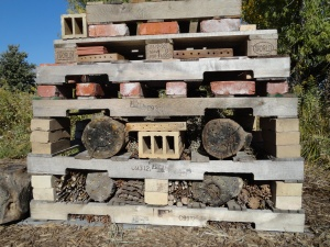 Building insect hotel.  Filling layers as we add pallets.