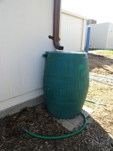 Rain barrel donated to our habitat project.