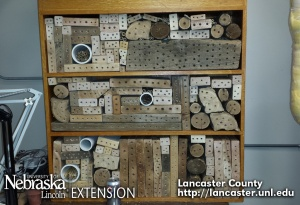 Bee Nest Box Structure - Bee Hotel