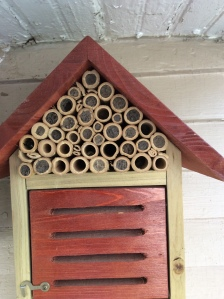 Bee house with Orchard Mason bees.