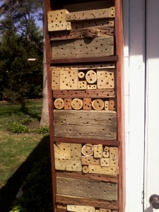 Master Gardener Tom's bee house.