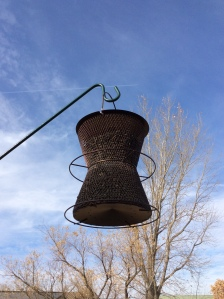 Close up view of sunflower seed feeder.