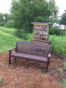 New bench added to Cherry Creek habitat.