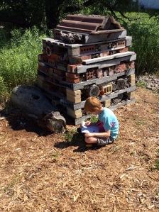Youth journaling in habitat.