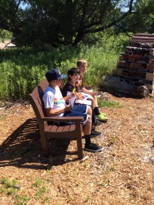 Boys on new bench in habitat.