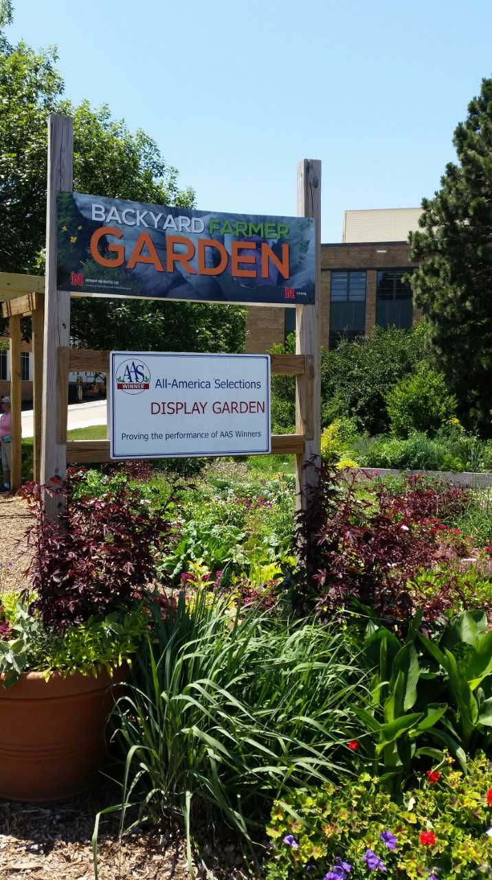 Back Yard Farmer Garden, Located East Of Keim Hall. Flower, Vegetable And  Herb Garden With All America Selection Plants.