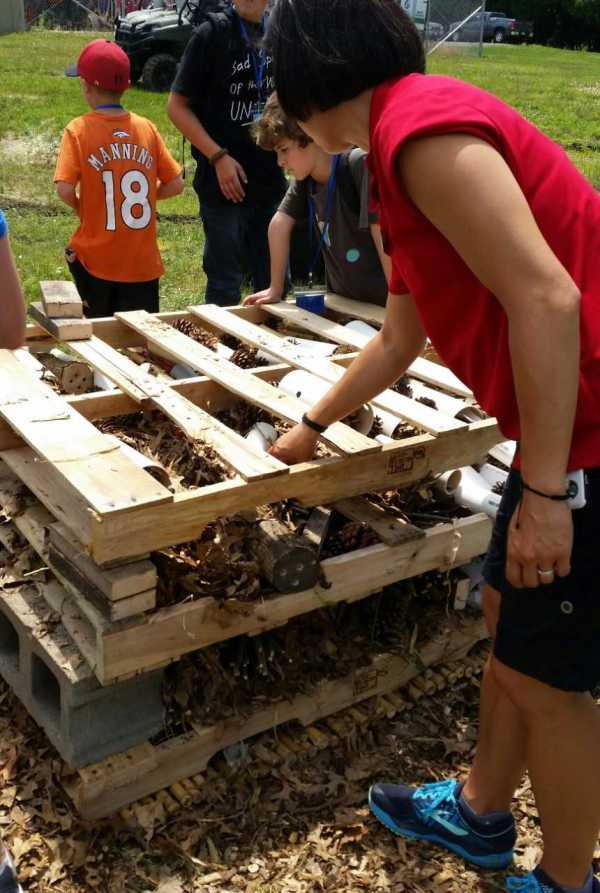 Making Insect Hotel