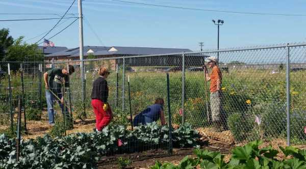 Mission Vegetable garden and Master Gardeners