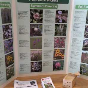NE Pollinator Habitat Certification