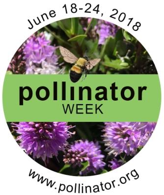 pollinaorweek18