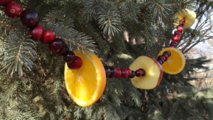Add fruit garland to your Christmas Tree